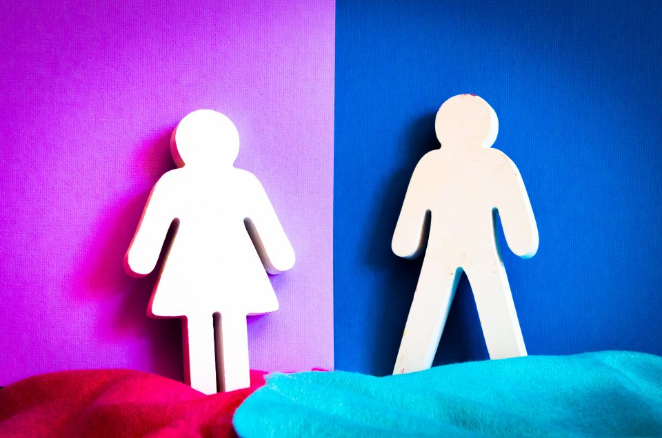 Say Goodbye to Gynocentrism, Welcome Gender Neutrality